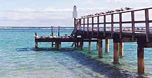 Horrocks jetty